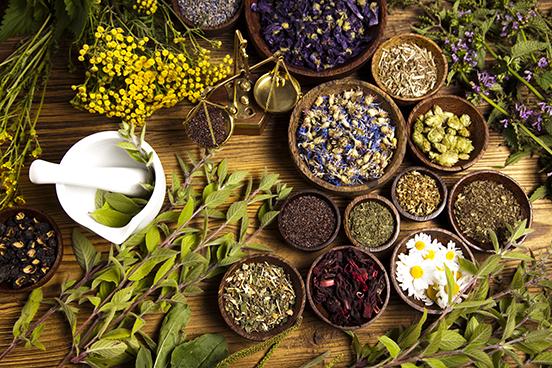 Western Herbalist